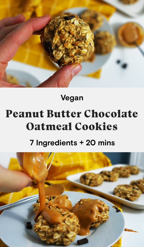 Vegan peanut butter chocolate oat breakfast cookies